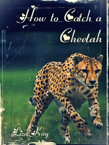 How to Catch a Cheetah - Jutoh