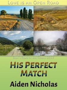 His Perfect Match - Jutoh (P6)